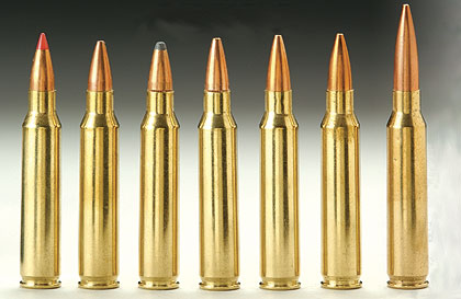 .223 caliber ammunition used in Newtown shooting