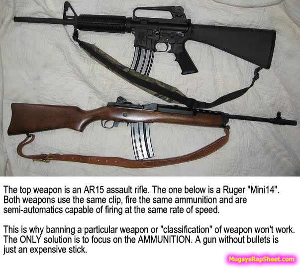 AR15 vs Ruger Mini-14
